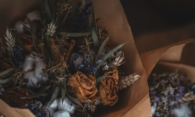 Dried flowers are back and this time for good