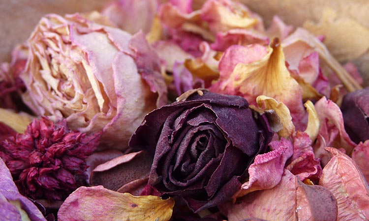 Scented Dried Flower