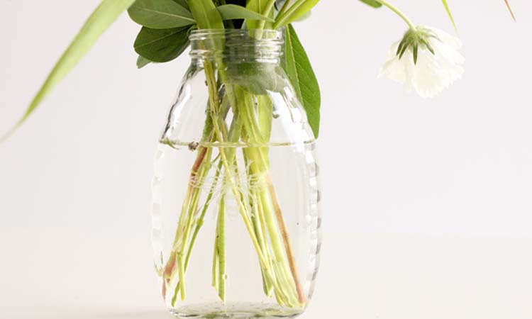 how often to change water for flowers