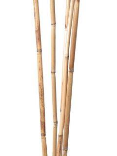 41-01-Bamboo-Reed-Natural.jpeg