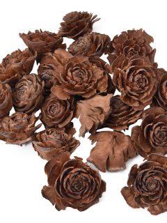45-18-Cader-Rose.jpeg