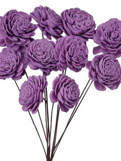 51-43-Sola-Beli-On-Stem-Purple.jpeg