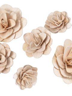 57-01-Betal-Rose.jpg