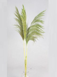 Bamboo-Grass-Large-Direct-Apple-Green