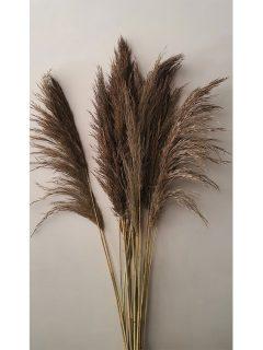 Bamboo-Grass-Large-Natural