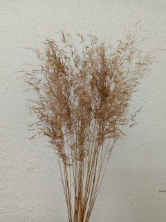 Munny-Grass-Natural